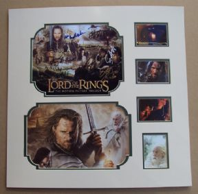 Lord Of The Rings Movie Collectors Set - Signed by Cast (X9)